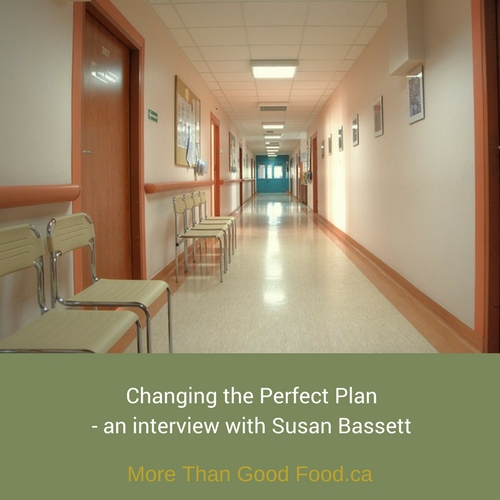 Changing the Perfect Plan - an interview with Sue Bassett
